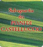 Salvaguardia di Castelluccio